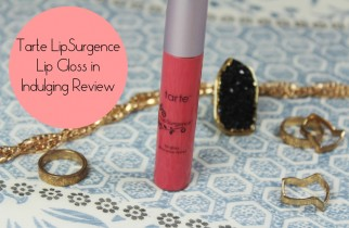 Tarte Indulging Lip Gloss Review (1)