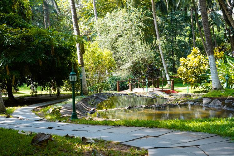 Kairali- The Ayurvedic Healing Village Palakkad