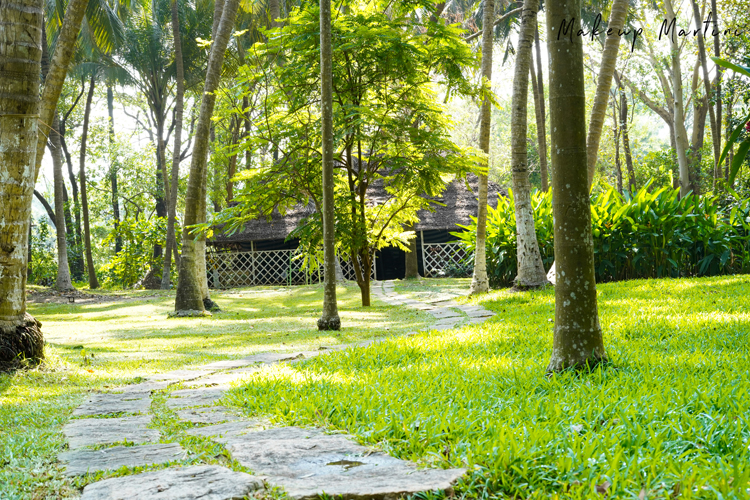 Kairali- The Ayurvedic Healing Village Resort